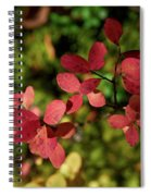 Northern Bilberry Spiral Notebook