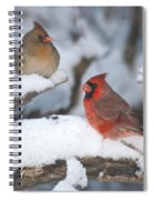 Northern Cardinal Pair 4284 2 Spiral Notebook