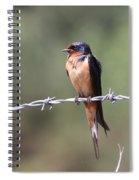 Not A Worry Spiral Notebook