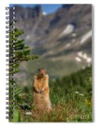 Not Much...whatz Up With You? Spiral Notebook