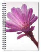Notocactus Herderii Flower Spiral Notebook
