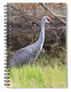 November Sandhill Crane Spiral Notebook