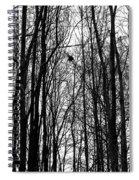 November Wood Spiral Notebook