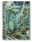 Now Just Where Did I Put That Acorn Spiral Notebook