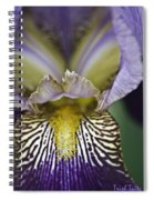 Now That's A Beauty Spiral Notebook