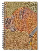 Nuge Art Spiral Notebook