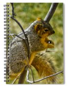 Nuts And Seeds Make A Great Lunch Spiral Notebook