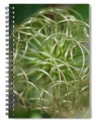 O So Round Spiral Notebook