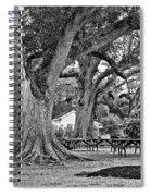 Oak Alley Backyard Monochrome Spiral Notebook