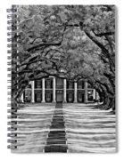Oak Alley Monochrome Spiral Notebook