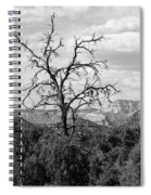 Oak Creek Tree Spiral Notebook