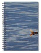 Oak Leaf Floating Spiral Notebook