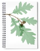 Oak Leaves, X-ray Spiral Notebook