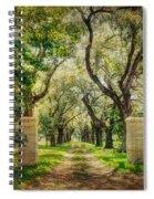 Oak Tree Lined Drive Spiral Notebook