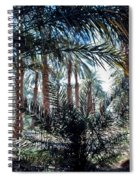 Oasis At Death Valley Spiral Notebook
