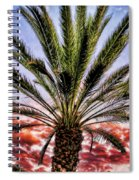Oasis Palms Spiral Notebook