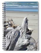 Ocean Beach Driftwood Art Prints Coastal Shore Spiral Notebook