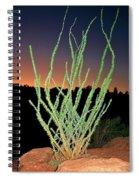Ocotillo Spiral Notebook