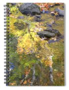 October Colors Reflected Spiral Notebook
