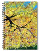 October Fall Foliage Spiral Notebook