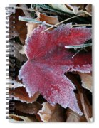 October Frost Spiral Notebook