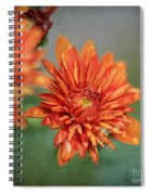 October Mums Spiral Notebook