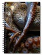 Octopus 1  Spiral Notebook