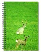 Oh For The Love Of Pete Spiral Notebook