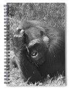 Oh My Head Spiral Notebook
