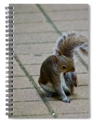 Oh That's The Spot Spiral Notebook