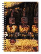Old Cat In The Woods Spiral Notebook