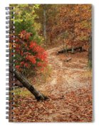 Old Country Road In Shannon County Spiral Notebook
