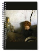 Old Doll In The Attic Spiral Notebook