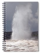 Old Faithful On A Cloudy Day Spiral Notebook