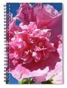 Old Fashioned Hollyhock Spiral Notebook
