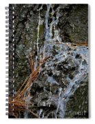 Old Needles And Sap Spiral Notebook