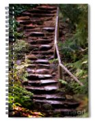 Old Wet Stone Steps Spiral Notebook
