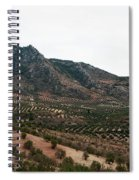 Olive Oil Mountain Spiral Notebook