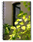 Omaha Old Market Passageway Spiral Notebook