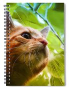On A Discovery Tour Spiral Notebook
