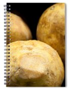 On Sale Today Spiral Notebook
