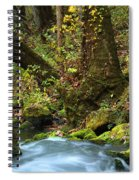 On The Banks Of Big Spring In The Missouri Ozarks Spiral Notebook