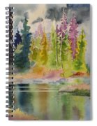 On The Colourful Pond Spiral Notebook