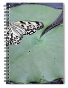 Once Upon A Lily Spiral Notebook