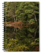 Once Upon An Autumn Morn Spiral Notebook
