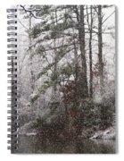 One Alabama Christmas Spiral Notebook