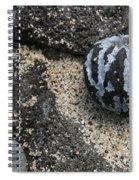 One Candlenut Spiral Notebook