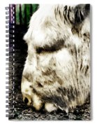 One Can't Complain Said Eeyore Spiral Notebook