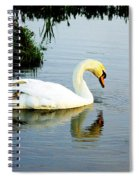 One Foot At Ease Swan Spiral Notebook