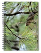One In The Midst Spiral Notebook